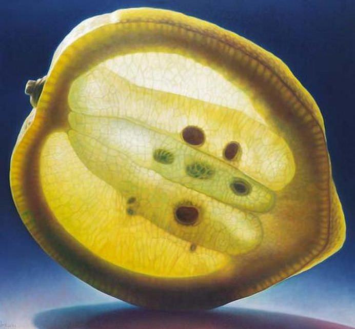 Intra in lumea fructelor translucide! GALERIE FOTO 10