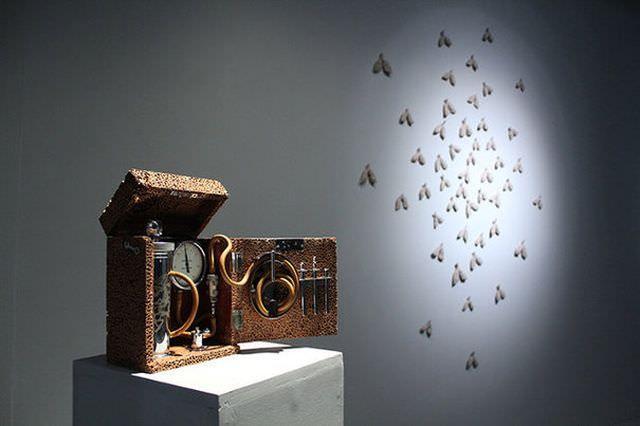 ARTA din BACTERII MOARTE O artista britanica de origine romana a realizat o instalatie din TUBERCULOZA!1
