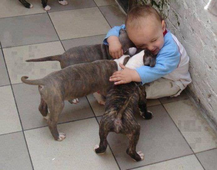 IMAGINI EMOTIONANTE care demonstreaza cat de mult au nevoie copii de ANIMALE DE COMPANIE!10