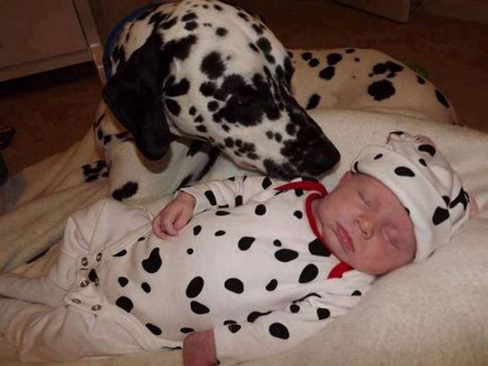 IMAGINI EMOTIONANTE care demonstreaza cat de mult au nevoie copii de ANIMALE DE COMPANIE!11