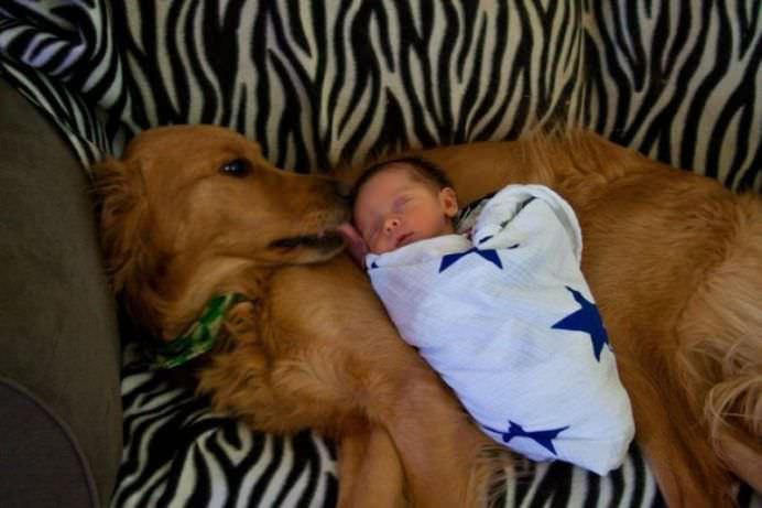 IMAGINI EMOTIONANTE care demonstreaza cat de mult au nevoie copii de ANIMALE DE COMPANIE!12