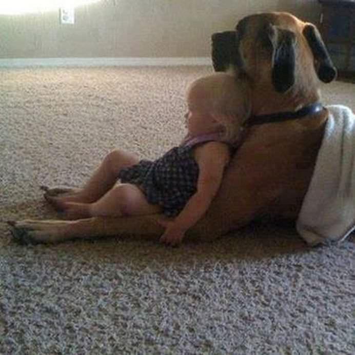 IMAGINI EMOTIONANTE care demonstreaza cat de mult au nevoie copii de ANIMALE DE COMPANIE!14