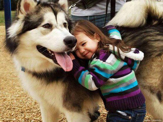 IMAGINI EMOTIONANTE care demonstreaza cat de mult au nevoie copii de ANIMALE DE COMPANIE!16