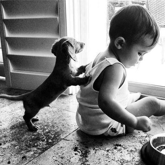 IMAGINI EMOTIONANTE care demonstreaza cat de mult au nevoie copii de ANIMALE DE COMPANIE!21