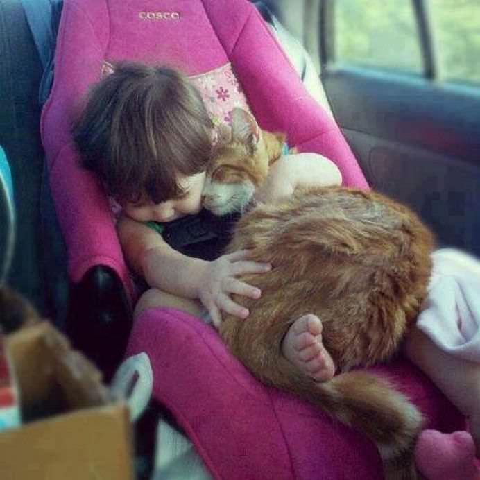 IMAGINI EMOTIONANTE care demonstreaza cat de mult au nevoie copii de ANIMALE DE COMPANIE!8