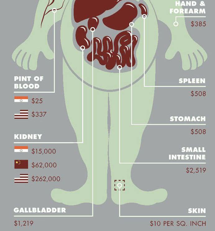 Stiai ca valorezi mai mult MORT decat VIU Un site a dezvaluit PRETURILE ORGANELOR pentru transplant!2