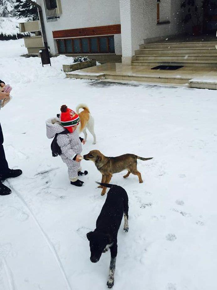 Toata lumea asteapta sa vada ce face Traian Basescu dupa ce a predat mandatul de presedinte! Iata raspunsul5