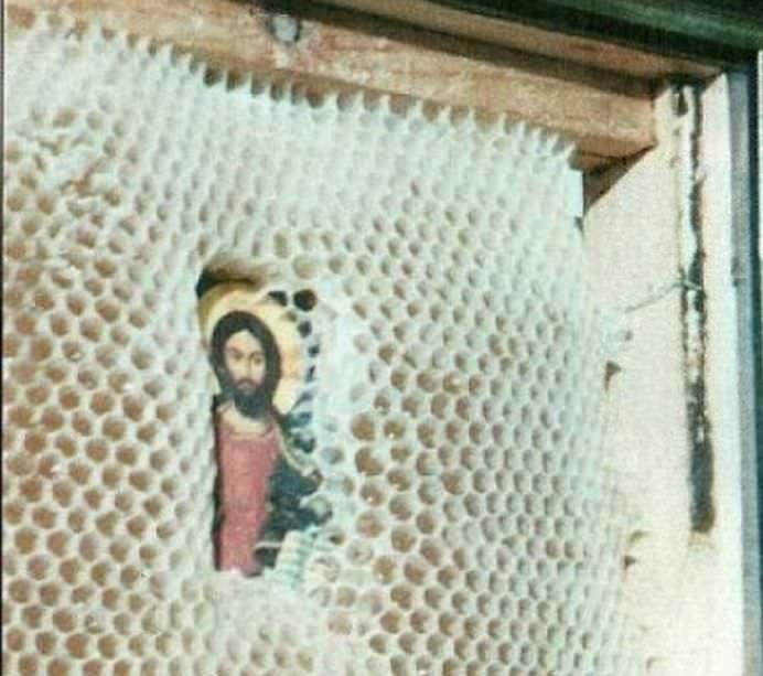 Minunea din stupul de albine! Ce s-a intamplat cu o icoana lasata in o luna in stup11